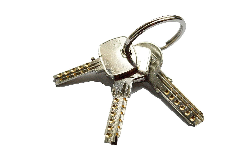 Juego de llaves maestras multipunto válidas para cerraduras de España: Amazon.es: Hogar