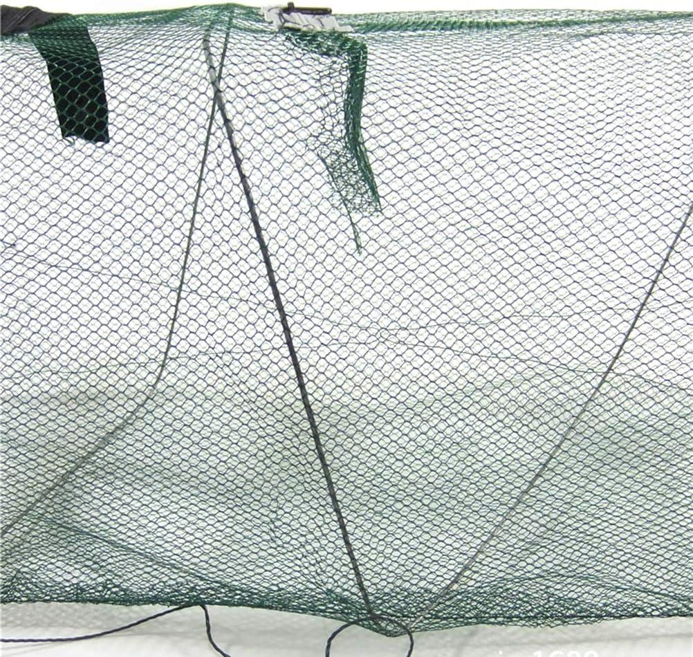 Hihey Bait Fish Trap Fish Reuse Ragbare Rete da Pesca Pesce Retrattile Gamberetti Gabbia in Rete Rete da Pesca Rete da Pesca Rete Rete da Pesca Pieghevole Attrezzatura da Pesca