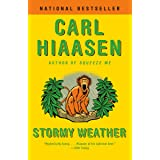 Stormy Weather (Skink Book 3)
