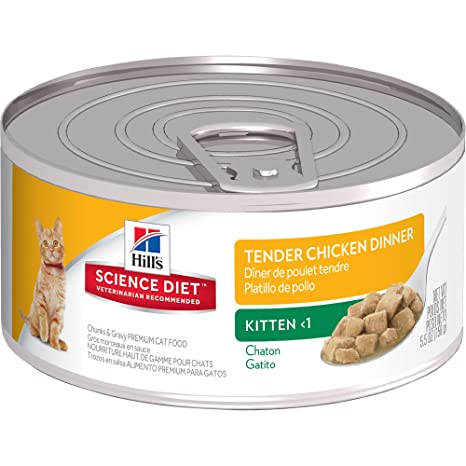 Amazoncom Hills Science Diet Kitten Wet Cat Food Tender Chicken