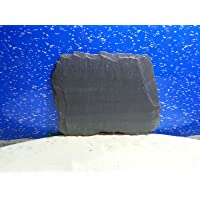 Fennstones real natural flat slate stone rock piece for vivarium tortoise beak lizard claw trim