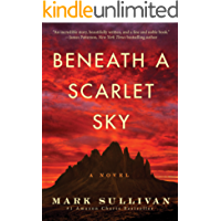 Amazon best sellers of 2017 in kindle ebooks beneath a scarlet sky a novel fandeluxe Gallery