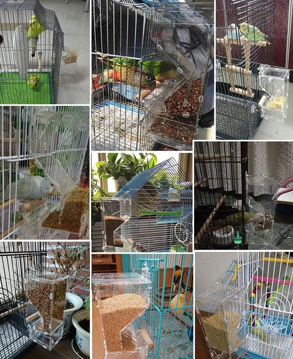 XMSSIT alimentador de pájaros sin ensuciar Integrado alimentador ...