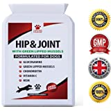 Advanced Hip And Joint Support - Glucosamine Chondroitin MSM & Green Lipped Mussels For Dogs – Chewable Food Supplement With Vitamins C & E – Great For Stiff & Older Dogs – 120 Chicken Flavour Tablets - Furever Friendz