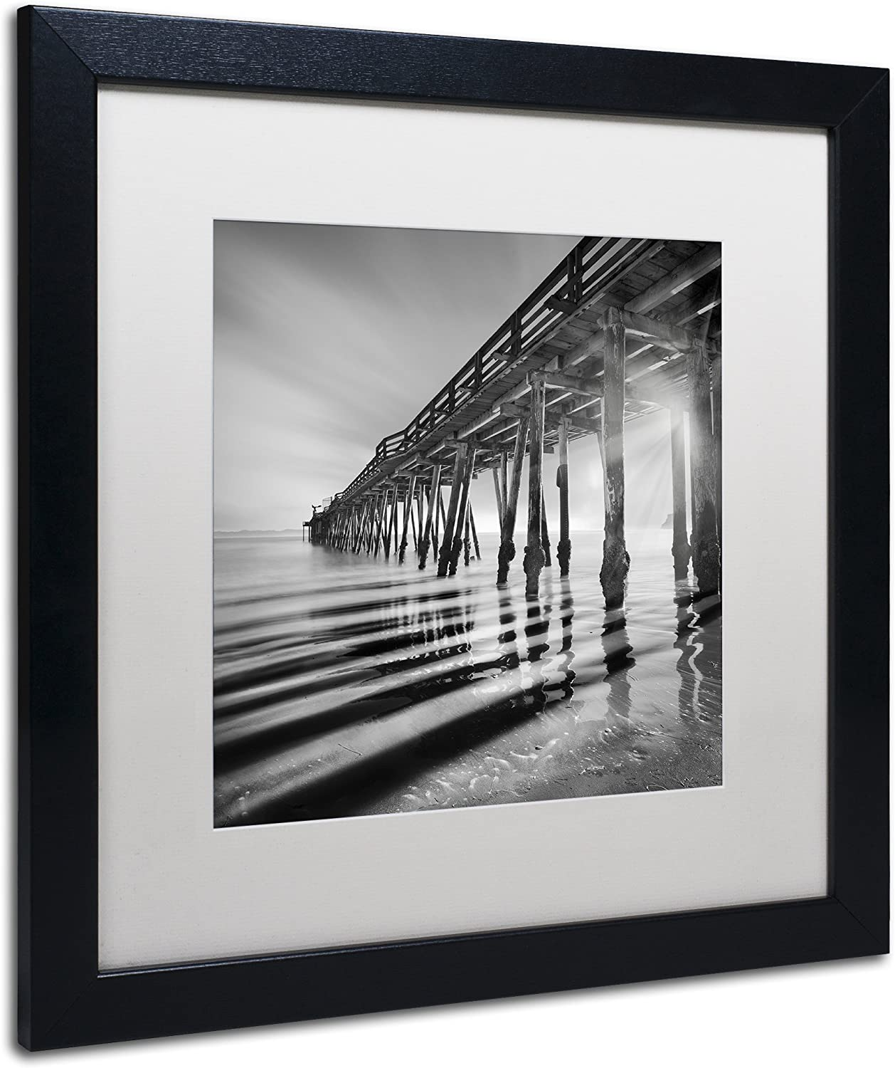 Water Tree by Moises Levy 12x12 B//W Photo Seascape Poster COASTAL ART PRINT