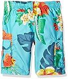Kanu Surf Toddler Boys' Victor Quick Dry Beach Swim Trunk, Papagayo Aqua, 2T