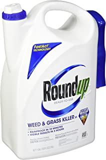 Amazon com : Roundup Weed and Grass Killer Concentrate Plus