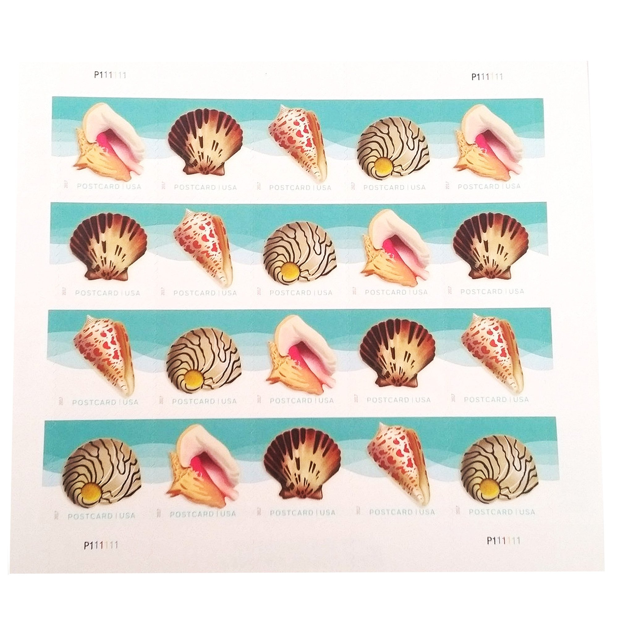 USPS Seashells Postcard Stamps, Sheet of 20