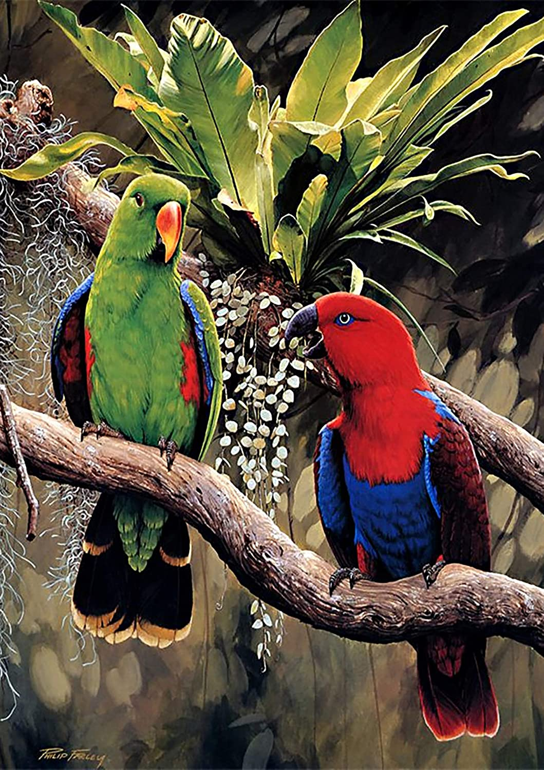 DIY 5D Diamond Painting Full Kits Parrot Cross Stitch Kit for Adult Diamond Painting Kits Crystal Embroidery Pictures Cross Stitch Art Craft for Home Decor Family Ornaments 12X16 inches