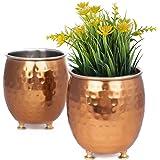 GoCraft Succulent Planter Pot Set of 2 - Hammered Copper Finish Mule Mug Inspired, Small Cactus Herb Plant Pot Window Box Con