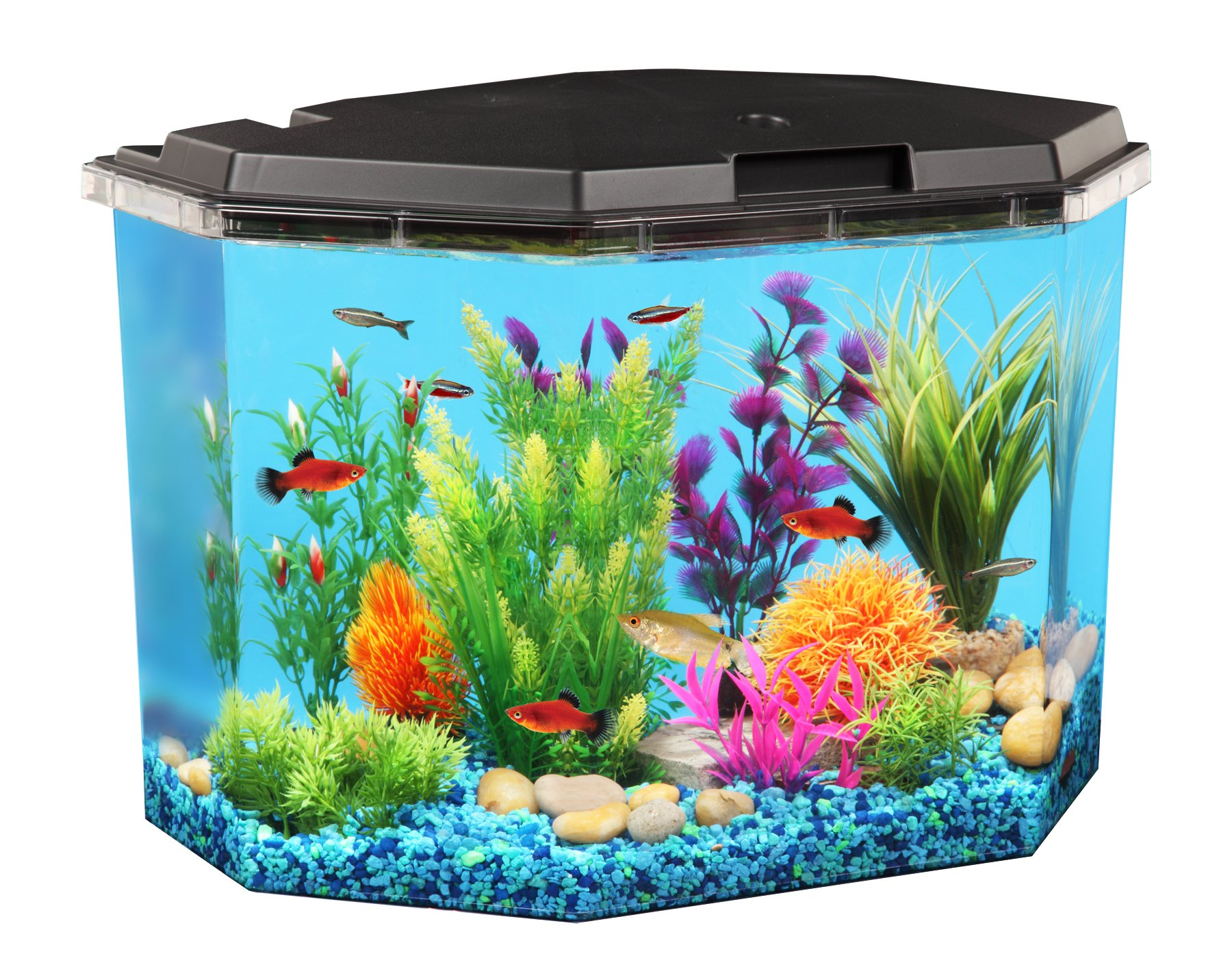 Koller Products 6.5-Gallon Aquarium Kit with Power Filter and LED Lighting, (AP650) by Koller Products