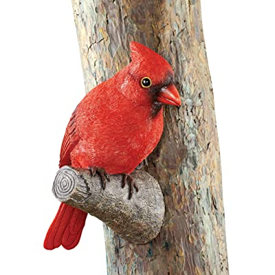 Collections Etc Textured Resin Cardinal Yard Figurine - Decorative Yard Accent for Bird Lovers: Home & Kitchen