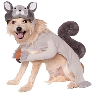 Rubie's Squirrel Pet Costume, Medium, Multicolor: Toys & Games