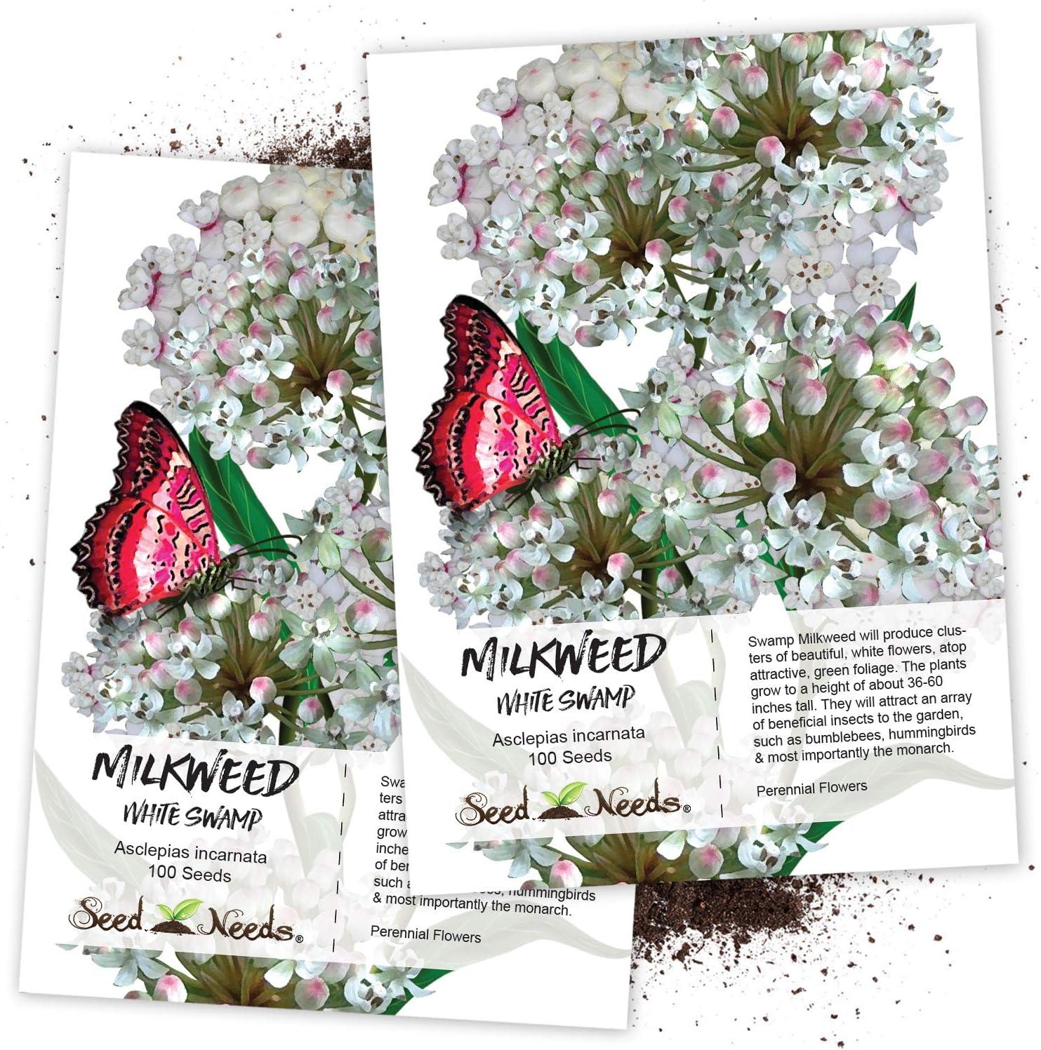 Carmine 25 Seeds Milkweed-Swamp Asclepias Incarnata