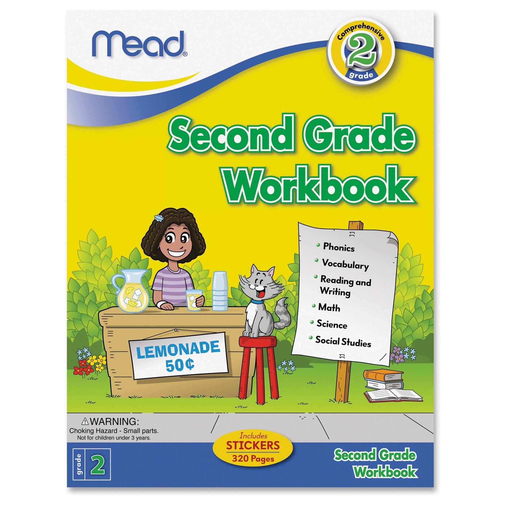 Mead Second Grade Workbook (48220)