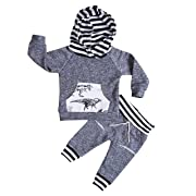 Aliven Toddler Infant Baby Boys Deer Long Sleeve Hoodie Tops Sweatsuit Pants Outfit Set,Dinosaur,0 - 6 Months