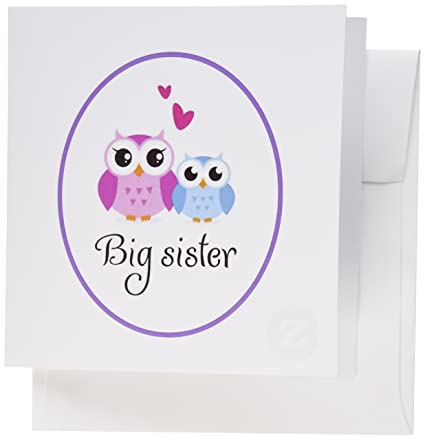 Amazon 3dRose Greeting Cards I Love My Big Sister Cute Owls