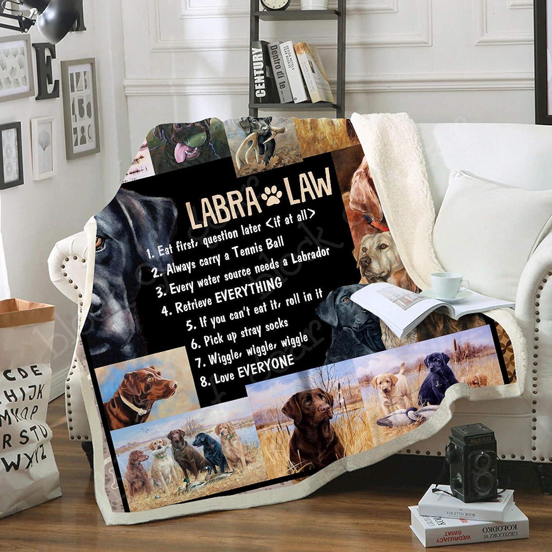 Amazon.com: Geembi Labrador TH598 - Manta de forro polar ...
