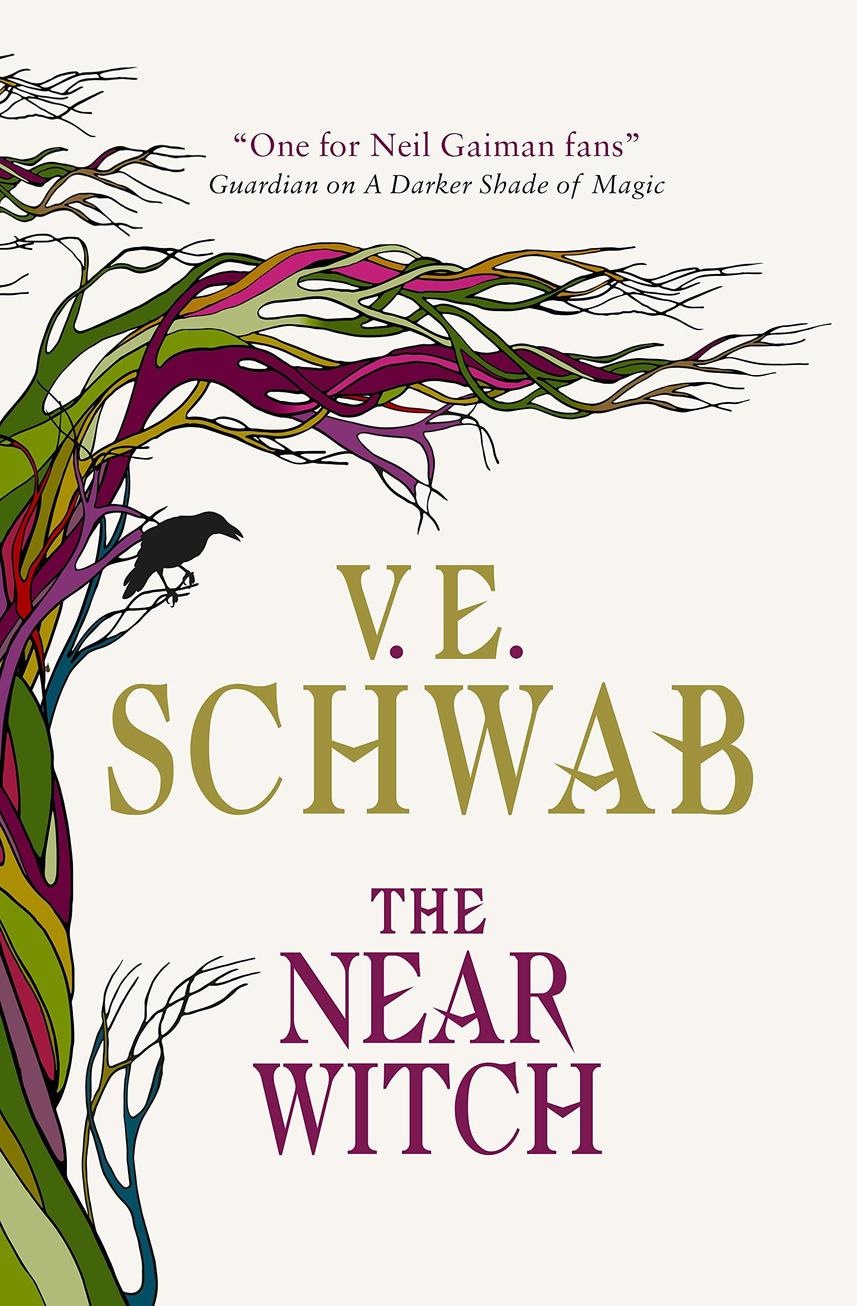 Amazon.com: The Near Witch (9781789091120): Schwab, V. E.: Books