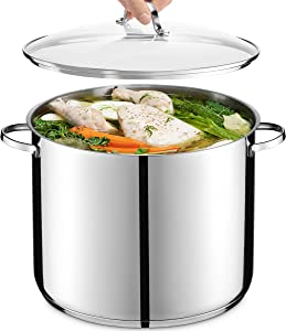 GOURMEX Tango Induction Stockpot | Stainless Steel Pot With Glass Cookware Lid | Interior Measurement Markings | Compatible with All Heat Sources | Dishwasher Oven Safe (21 Quart)