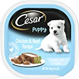 Cesar Gourmet Puppy Wet Dog Food