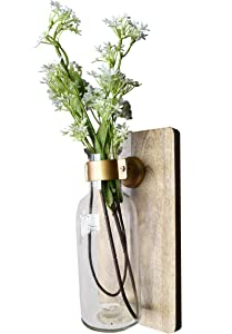 AIKYA Clear Wall Flower Sconce – Rustic Floral Hanging Vase – Ideal Contemporary Wall Decor for Home, Office, Farmhouse, Hotels, Restaurants or as a Housewarming Gift – Flower not Included
