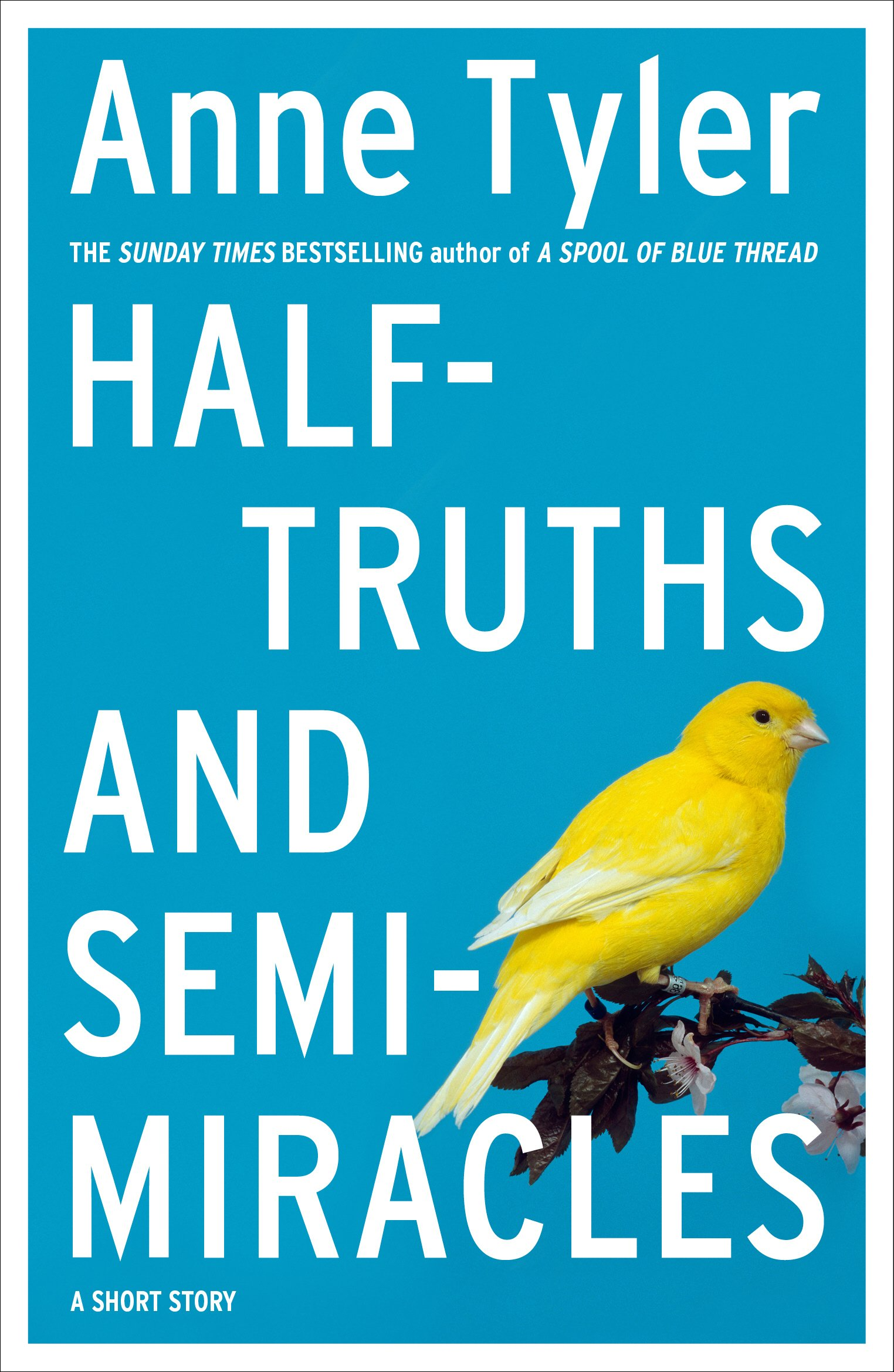 Half Truths And Semi Miracles  A Short Story  English Edition