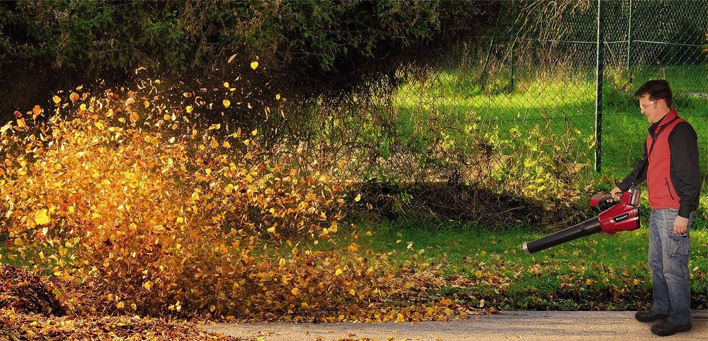 Soplador De Hojas,Aspirador de hojas,Aspirador Eléctrico,Aspirador soplador