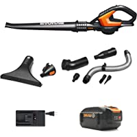 Worx WG545.4 AIR 20V PowerShare 4.0ah Cordless Sweeper/Blower with Attachments and Bag