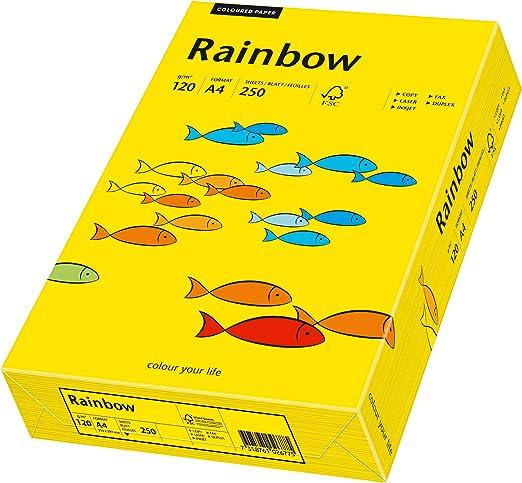 A4 250 Blatt gelb Papyrus 88042348 Druckerpapier Rainbow 120 g//m/²