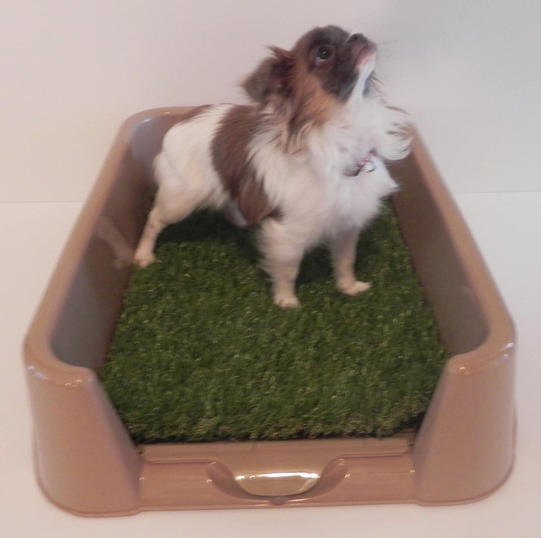 """Pet Supplies Dog Toilet Grass Rascal Dog Litter Box """"Little"""