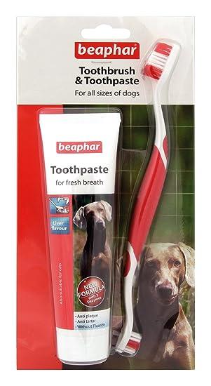 Beaphar cepillo y pasta dental para perros de todos los tamaños, anti-placa hígado