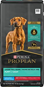 Purina Pro Plan with Probiotics, High Protein Large Breed Dry Puppy Food, Development Beef & Rice Formula - 34 lb. Bag