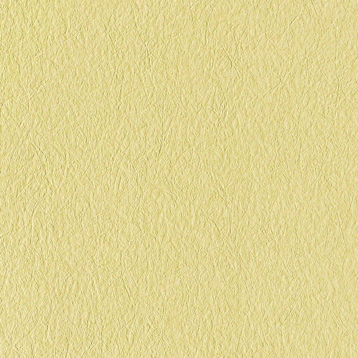 リリカラ 壁紙26m モダン 無地 グリーン カラーバリエーション LV-6141 B01IHRRJ4M 26m|グリーン