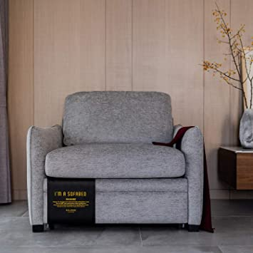 Miraculous Living Room Furniture Single Chair Pull Out Sofa Bed Home Interior And Landscaping Oversignezvosmurscom