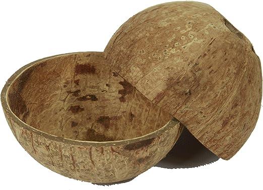 Schale aus Holz 12/cm Ma/ße