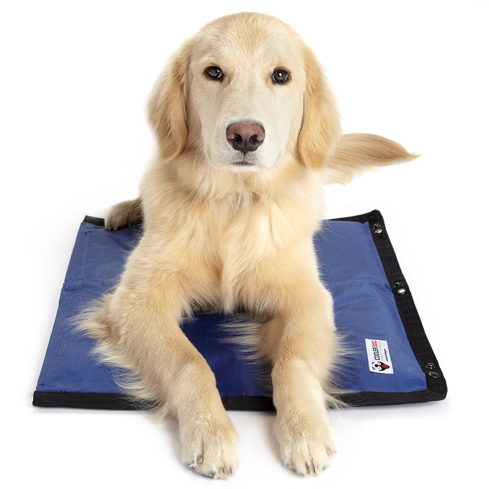 Cooler Dog Turbo Cooling Mat, Small Sized Dogs