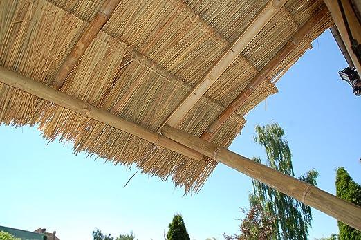 10 pieza palmera Techos palmdach paneles Palm schindel palmera ...