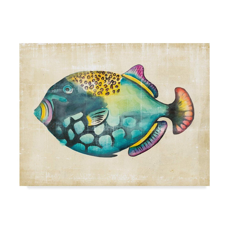 Trademark Fine Art WAG05245-C2432GG Aquarium Fish IV by Chariklia Zarris, 24x32,