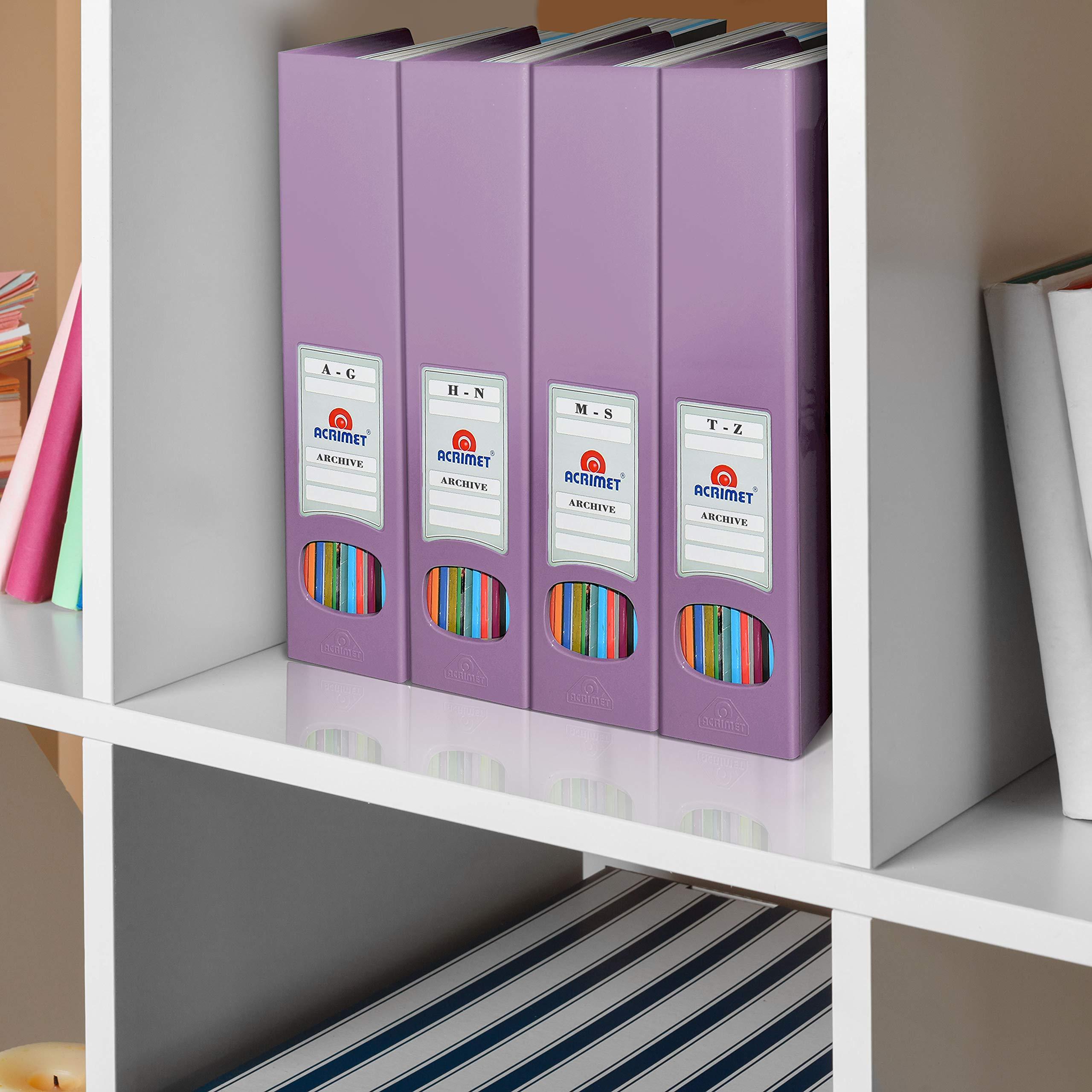 Solid Purple Color Acrimet Magazine File Holder Rack Organizer Plastic 2 Pack