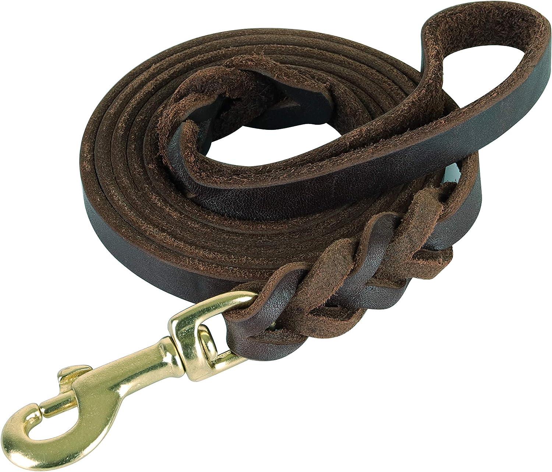 teck Genuine Leather Braided Dog Leash Full Grain Heavy Duty Training Dog Leash