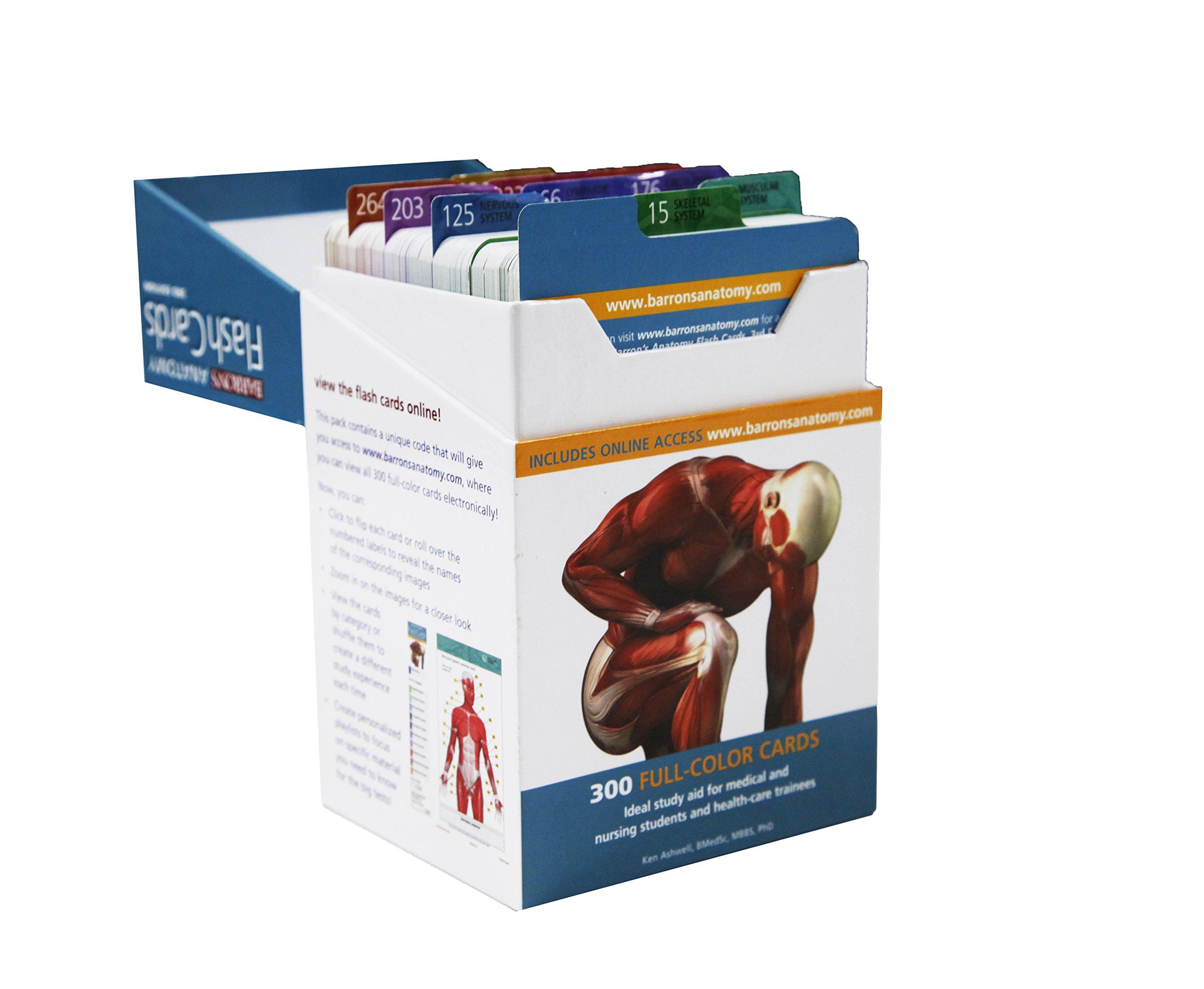 Barron\'s Anatomy Flash Cards: Ken Ashwell: 9781438077178: Anatomy ...