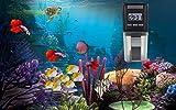PROCHE Digital Automatic Fish Feeder Fish/Turtle