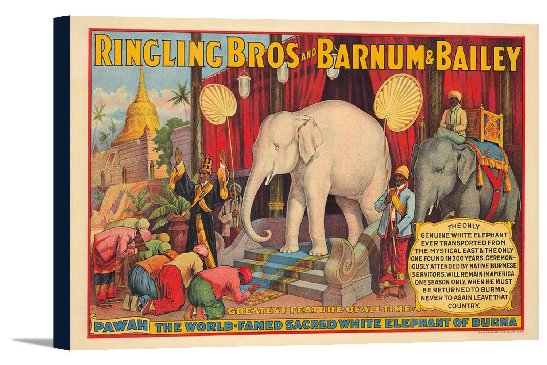 P。T。バーナムとベイリー – Theホワイト象ビンテージポスター(アーティスト:匿名) USA C。1927 24 x 16 Gallery Canvas LANT-3P-SC-73792-16x24 B01DZ1ZPCS  24 x 16 Gallery Canvas