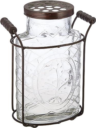Creative Co-Op Large Glass Vase with Frog Lid Holder
