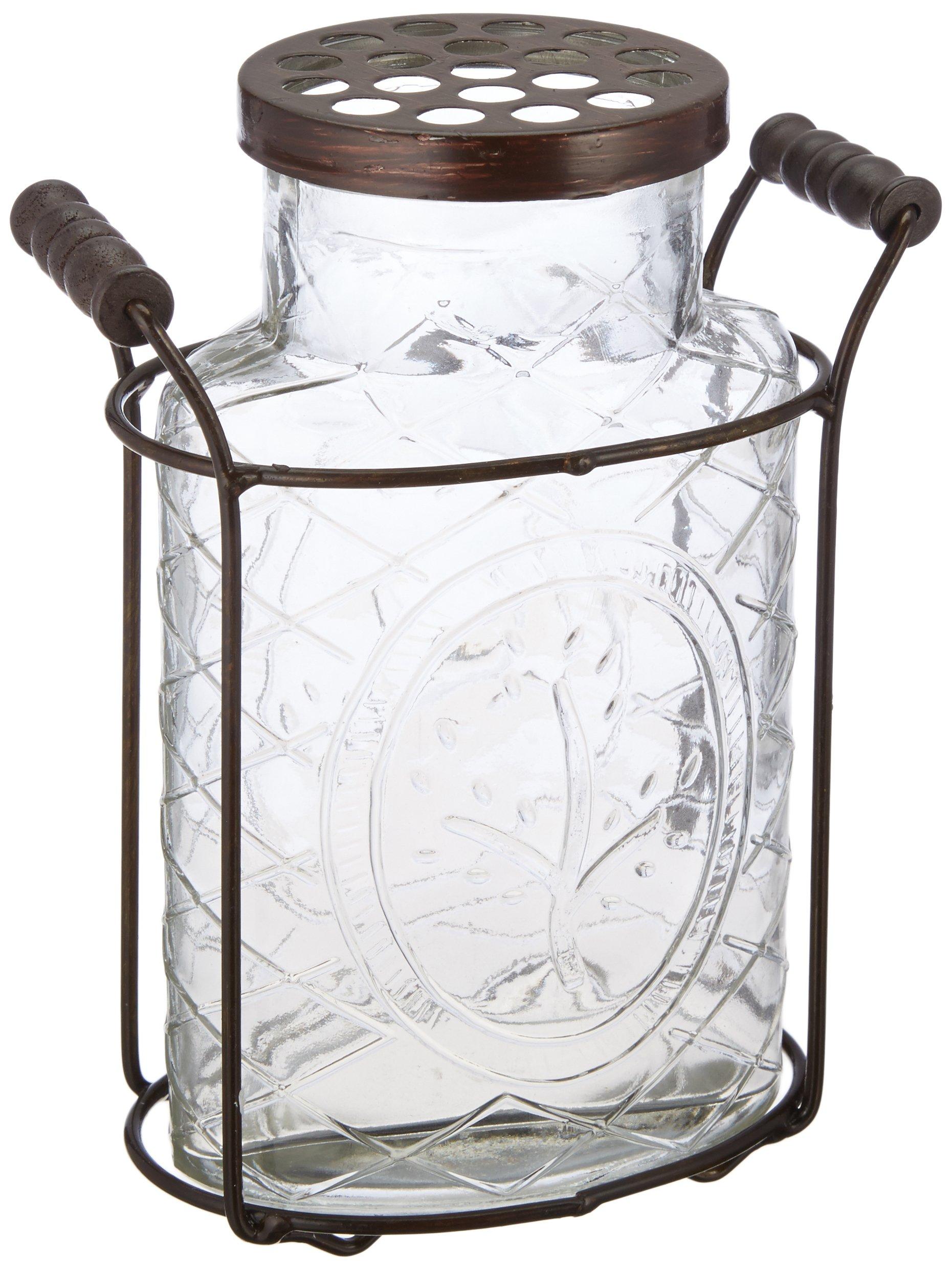 Creative Co-Op DE3877 Large Glass Vase with Frog Lid & Holder