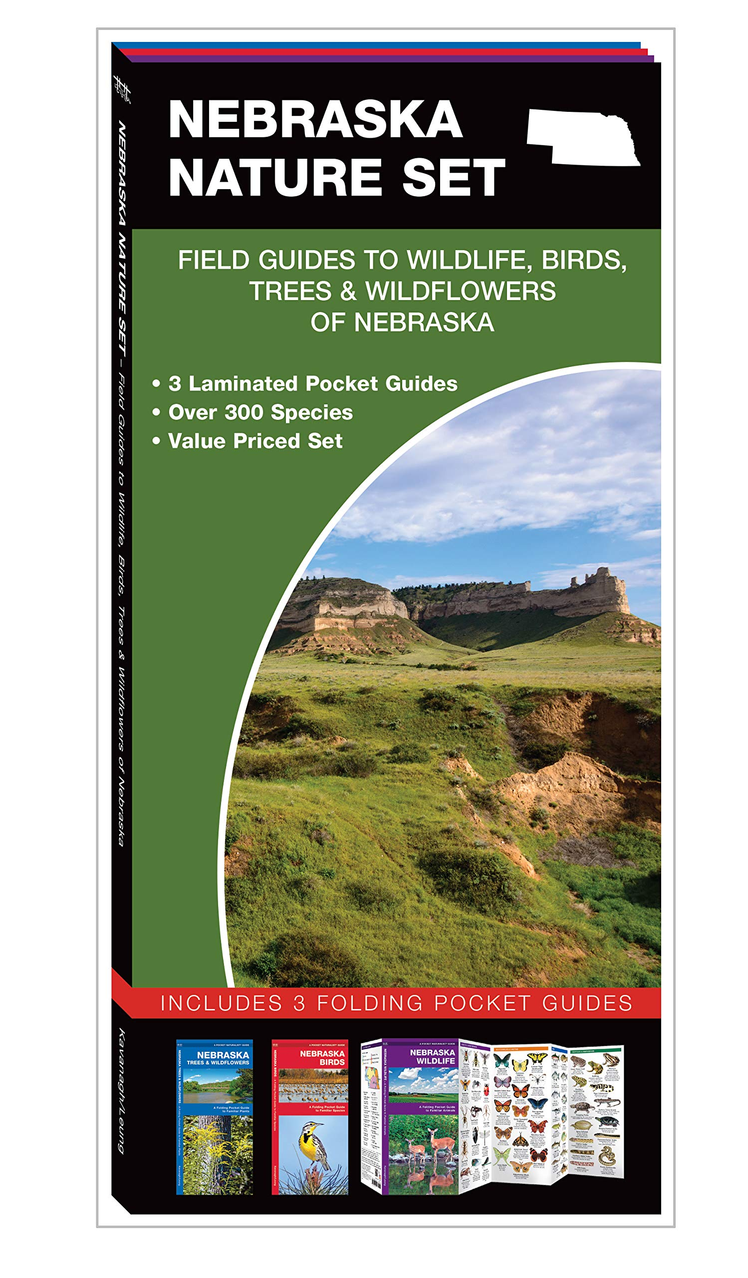 Download Nebraska Nature Set: Field Guides to Wildlife, Birds, Trees & Wildflowers of Nebraska pdf