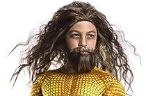 W590 Dawn of Justice League Aquaman Costume Wig and Beard Set Mens Superhero