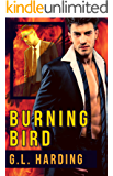 Burning Bird: An MM Office Romance