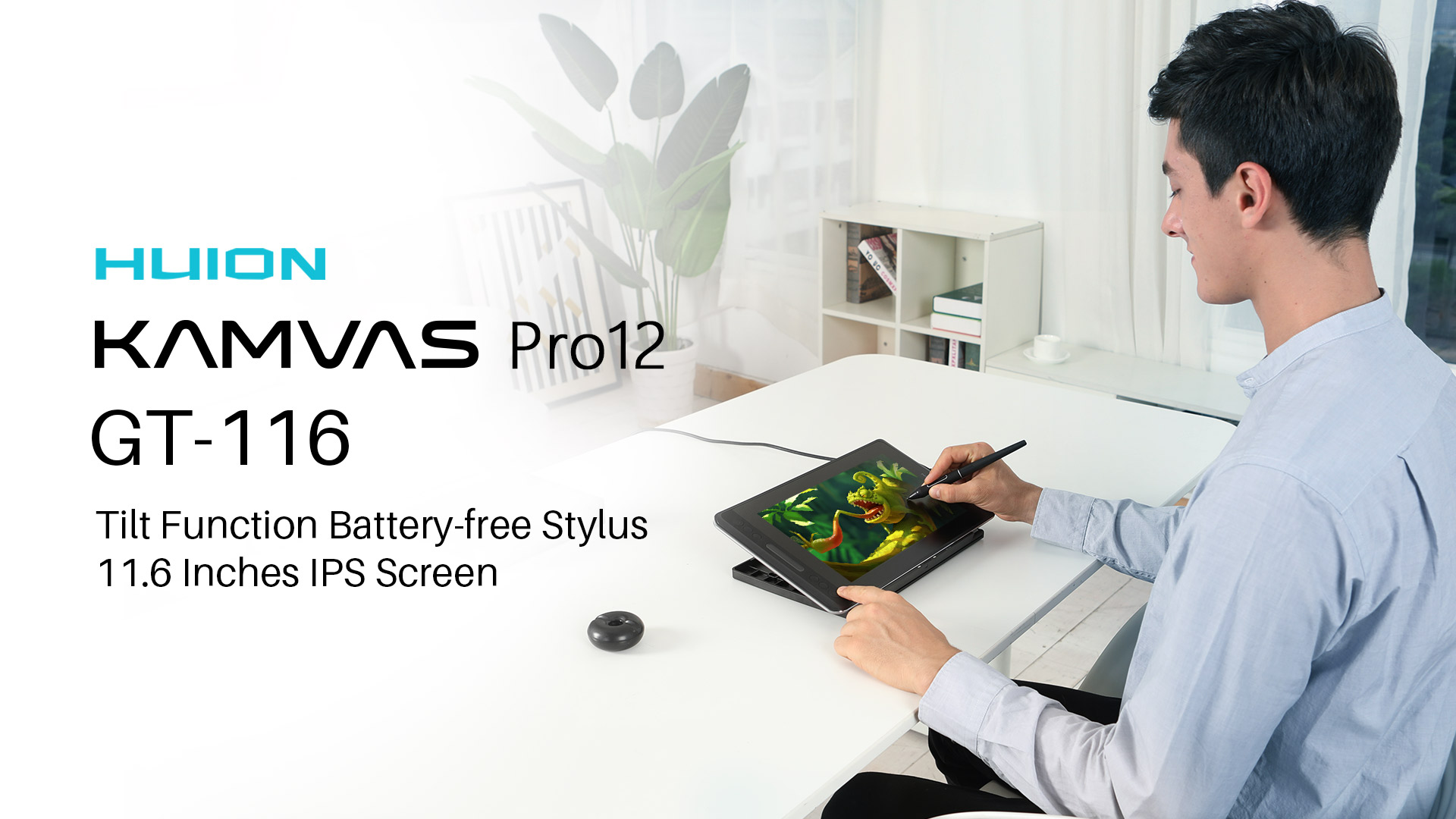 Huion KAMVAS Pro 12 GT-116 Graphics Drawing Monitor Pen